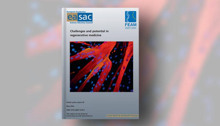 """Se publica el informe sobre """"Challenges and Potential in Regenerative Medicine"""" dirigido a las Instituciones Europeas y Estados Miembros"""