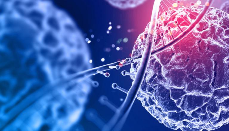 Actividades de divulgación científica e internacionalización científica en el marco del Máster Universitario en Ingeniería Tisular y Terapias Avanzadas